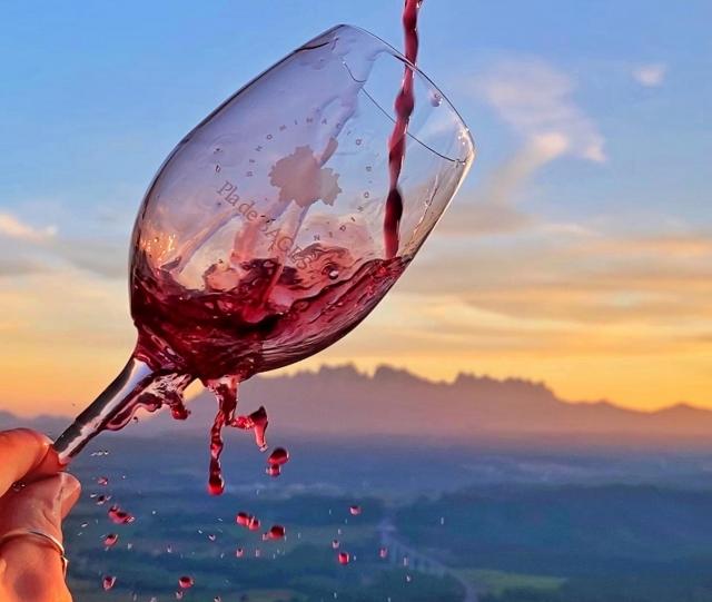Durant el confinament la @mireiatual una de les sòcies de DEIM va engegar aquest nou projecte!   Terra i Vi (@terraivi) és el resultat de la unió de dues de les seves passions, el vi i la fotografia 💜  D'una manera propera, original i divertida, la Mireia i el Robert, gran amant dels vins vinculat durant molts anys a la Confraria de Vins del Bages, ens descobreixen els cellers i vins de la comarca.  En el seu últim post han maridat vi i música, no us ho perdeu! ✨  #donesemprenedores #deim #manresa #donesemprenedores #socies #terraivi #dopladebages #vinsdelbages #winelover #catalunya